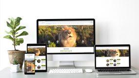 Website designs Panthera Africa